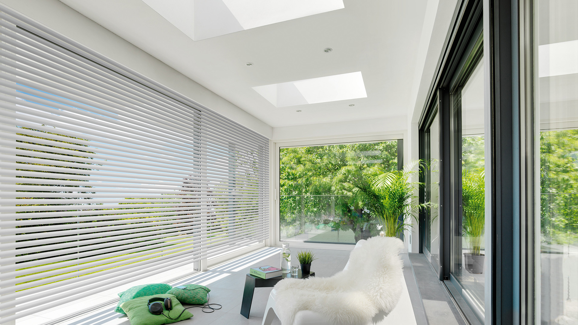 okna płaski dach