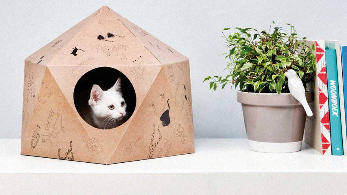 Design dla zwierząt
