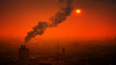 Wygraj ze smogiem